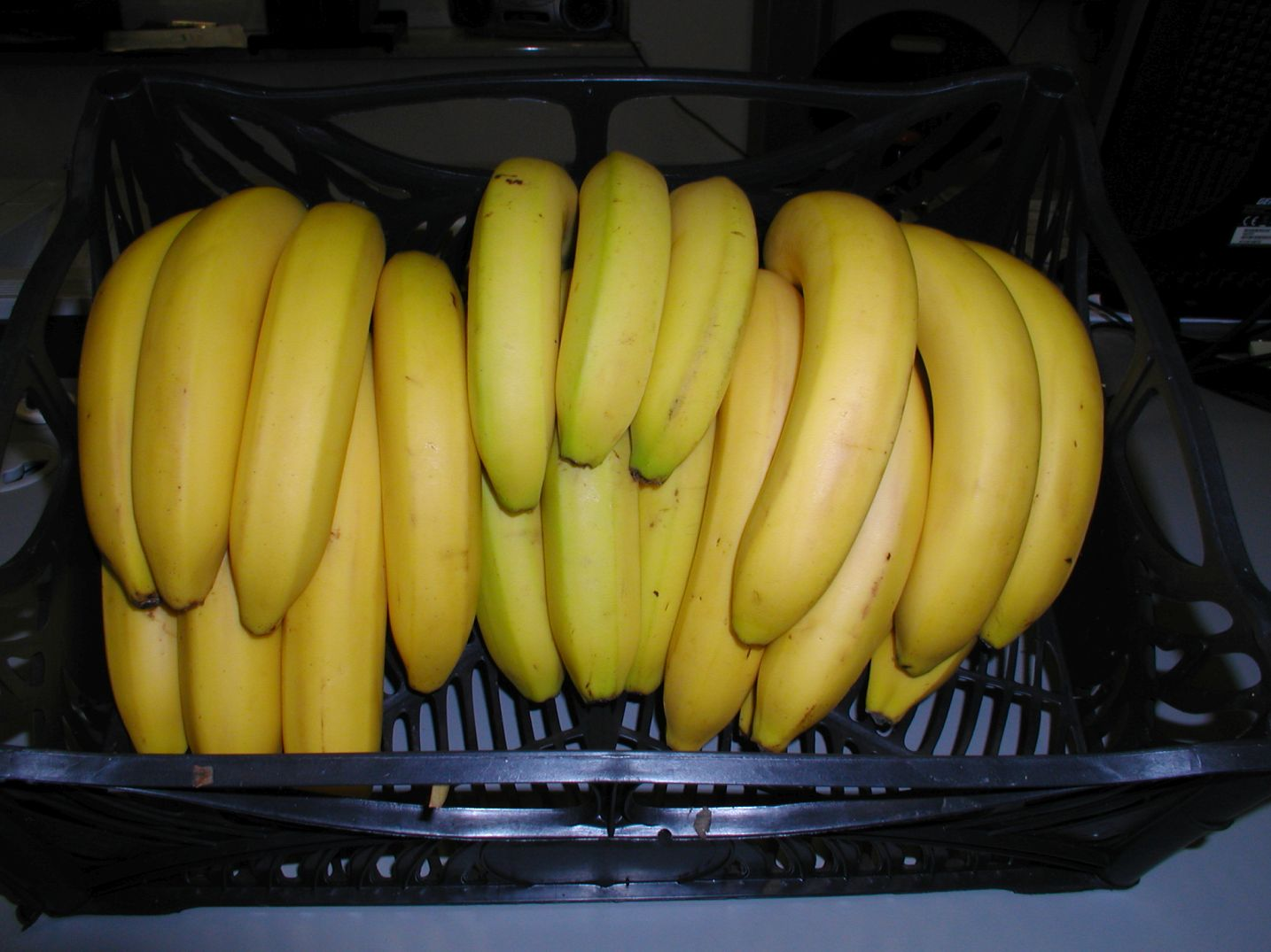 Herzog Großhandel Exotische Früchte Sortiment Bananen