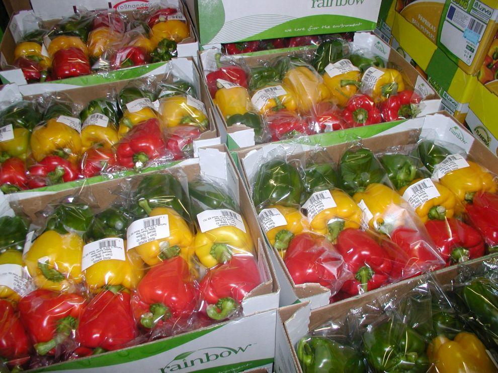 Herzog Großhandel Gemüse Sortiment Paprika