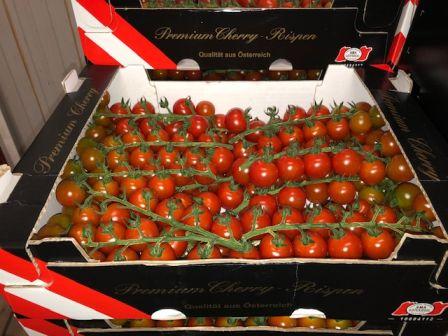 Herzog Großhandel Gemüse Sortiment Tomaten