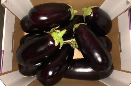 Herzog Großhandel Gemüse Sortiment Aubergine